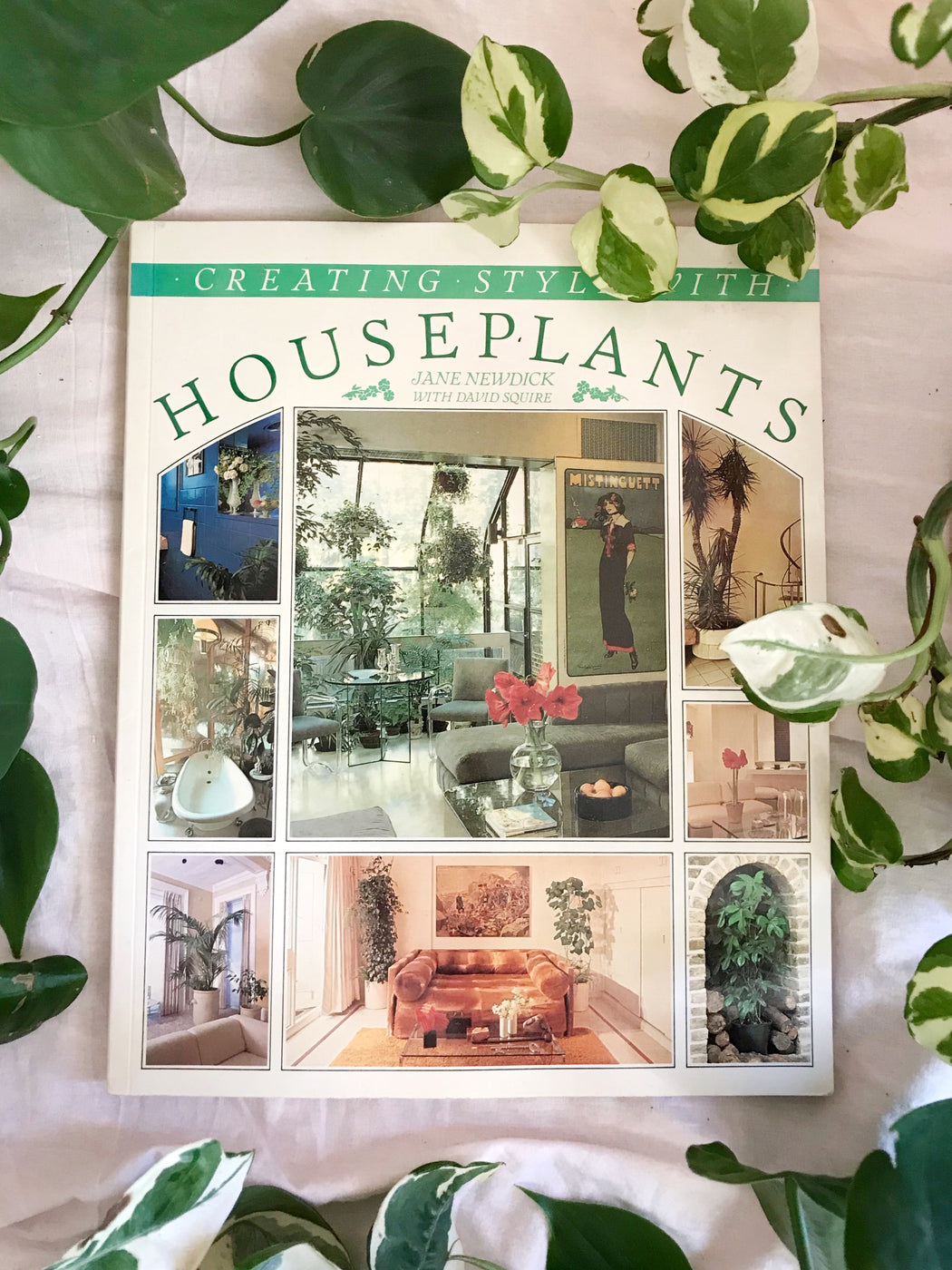 Creating Style with Houseplants by Jane Newdick - Storytellers Workshop