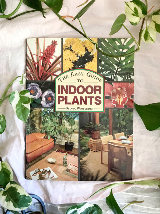 The Easy Guide to Indoor Plants by Sylvia Woffenden