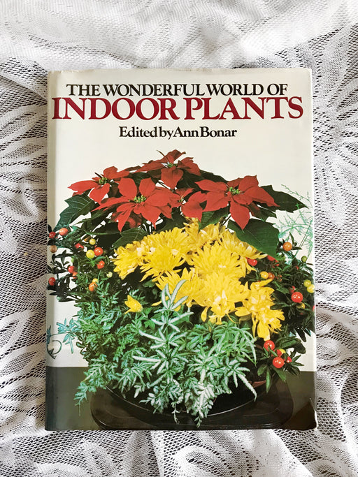 The Wonderful World of Indoor Plants - By Ann Bonar | Storytellers Workshop