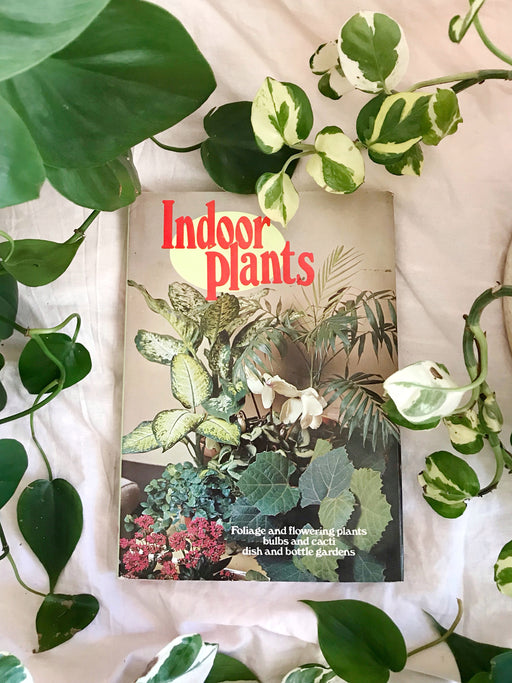 Indoor Plants Book