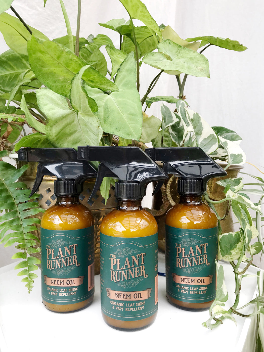 Organic Neem Oil Leaf Shine and Pest Repellent