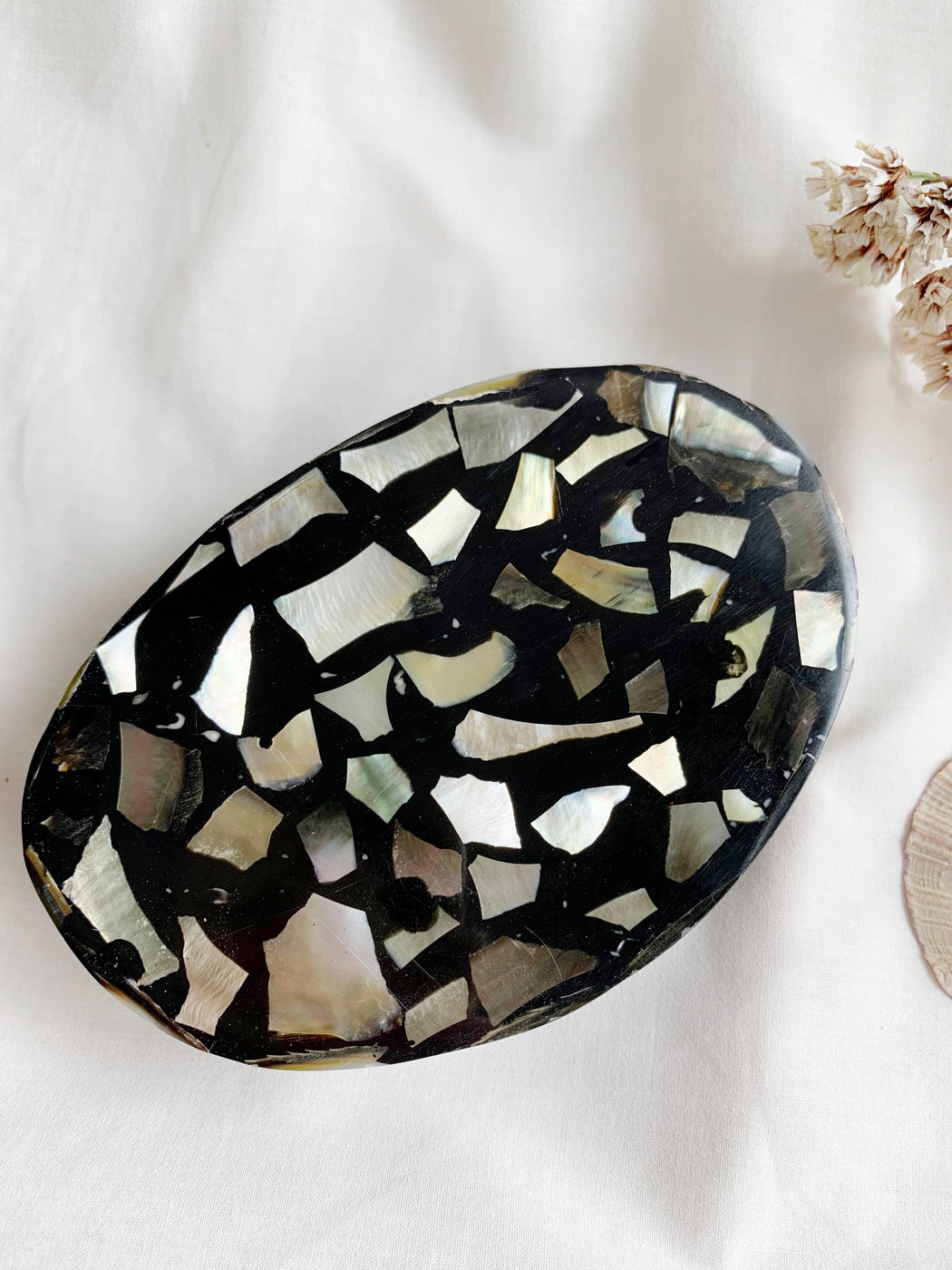 Paua Shell Soap Dish
