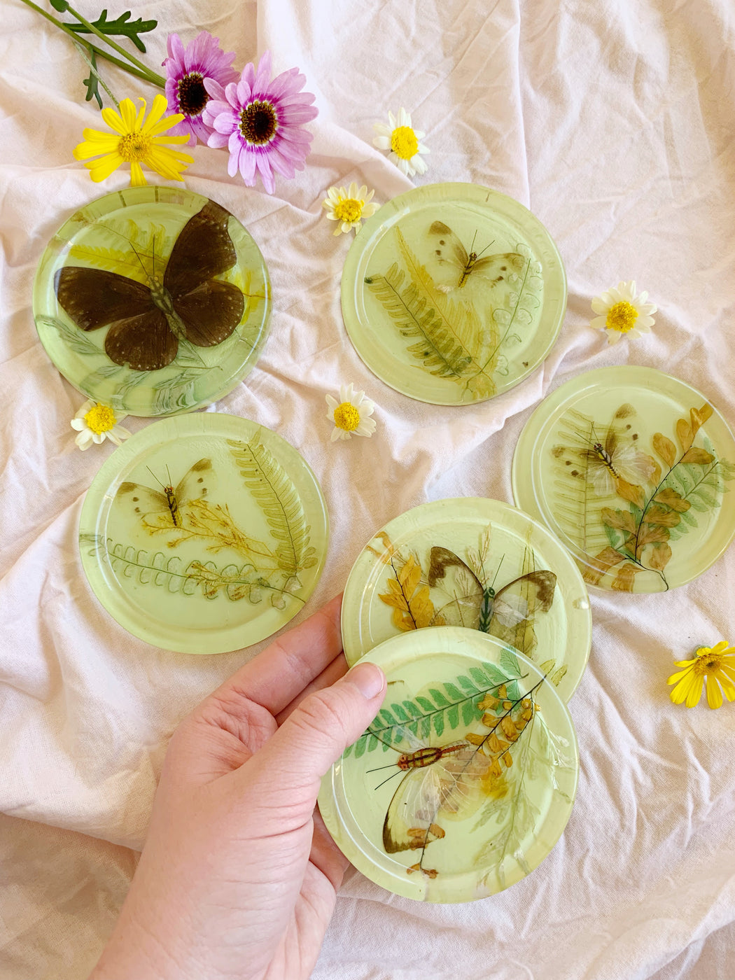 Six Butterfly Resin Coasters