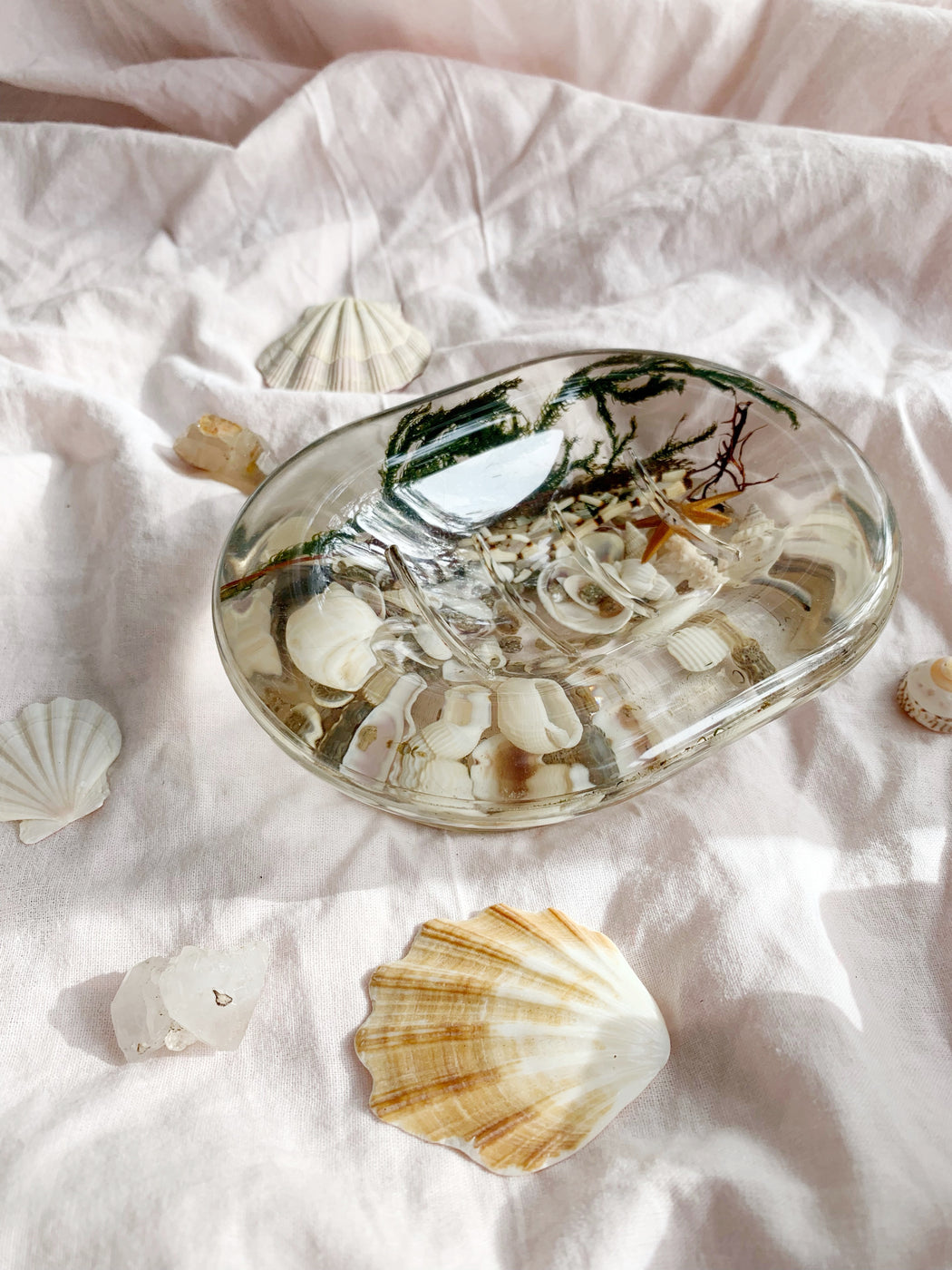 Resin Soap Dish with Floating Seashells | Storytellers Workshop