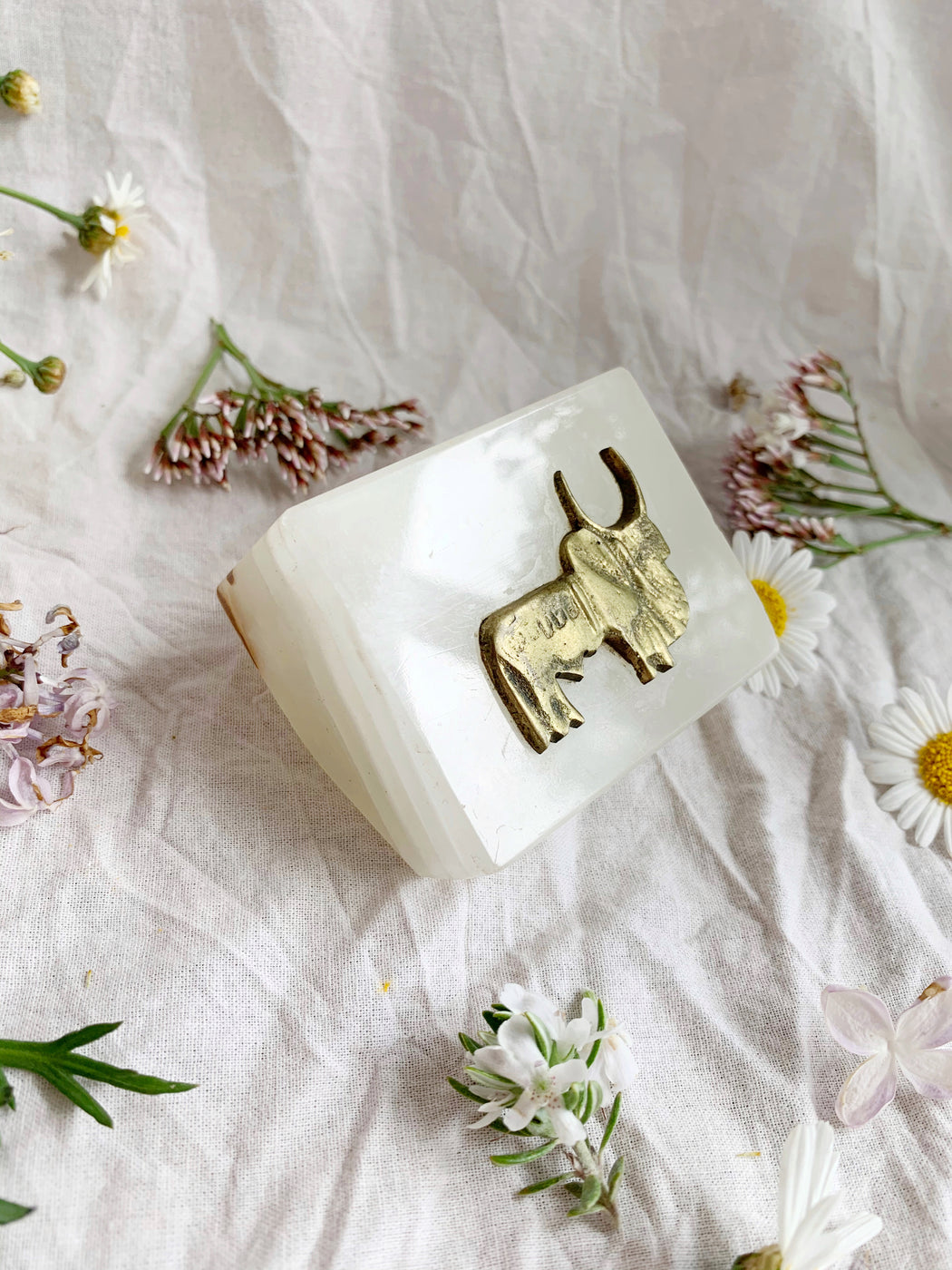 Soapstone Paperweight with Brass Bull | Storytellers Workshop