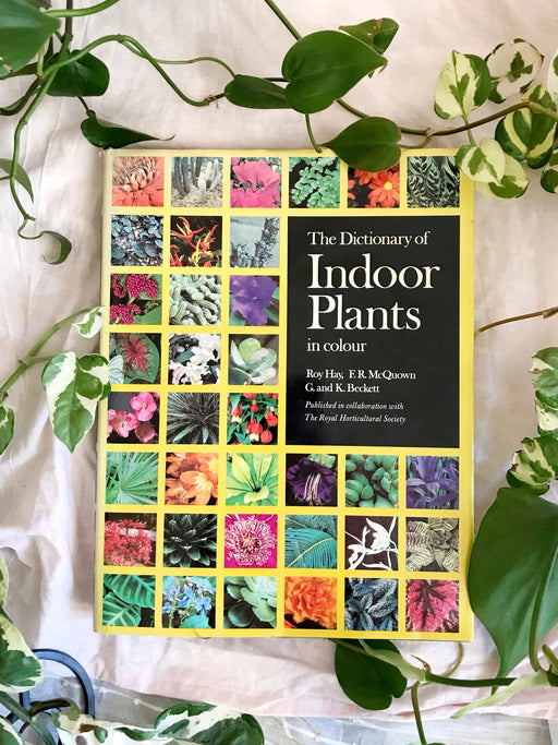 The Dictionary of Indoor Plants