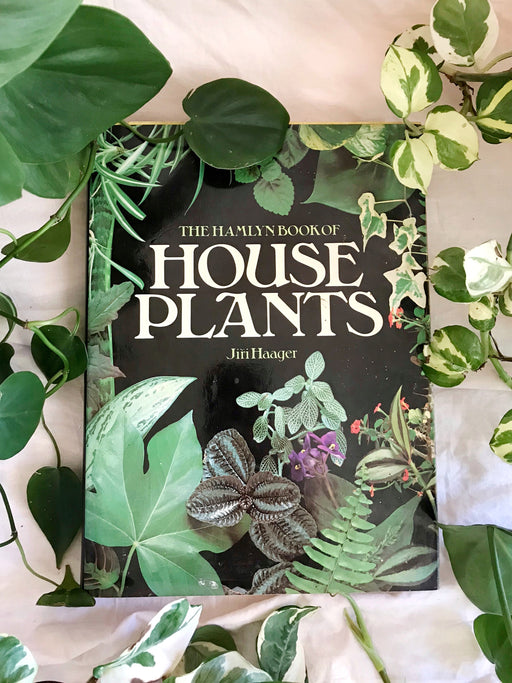 The Hamlyn Book of House Plants by Jiri Haager