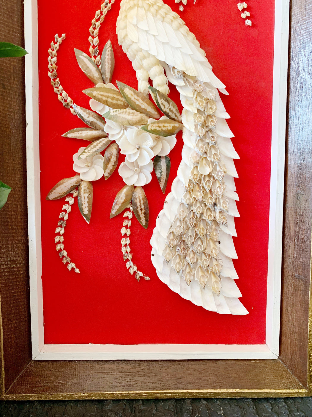 Framed Peacock Shell Art - Storytellers Workshop