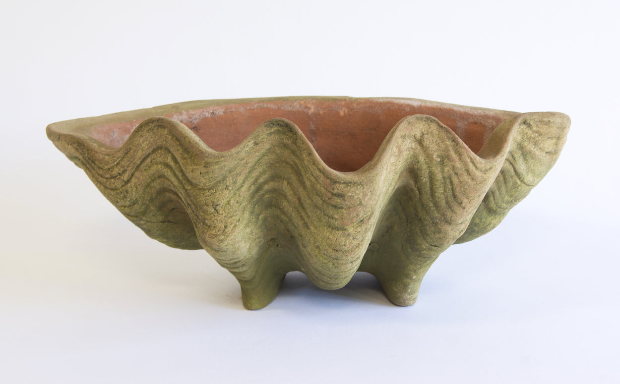 Aged Conch Shell Terracotta Planter | Westward Home