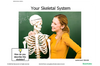 Activities-to-Go: Human Body (Bones)