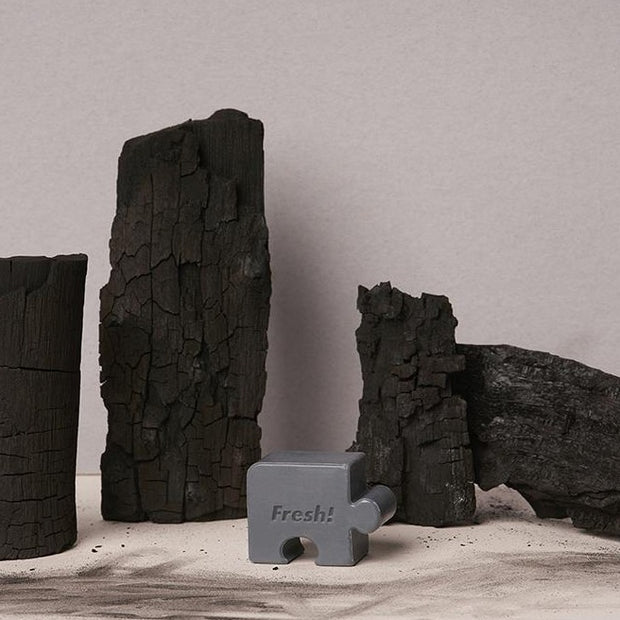 Fresh Food For Skin | Charcoal Purifying Puzzle Soap