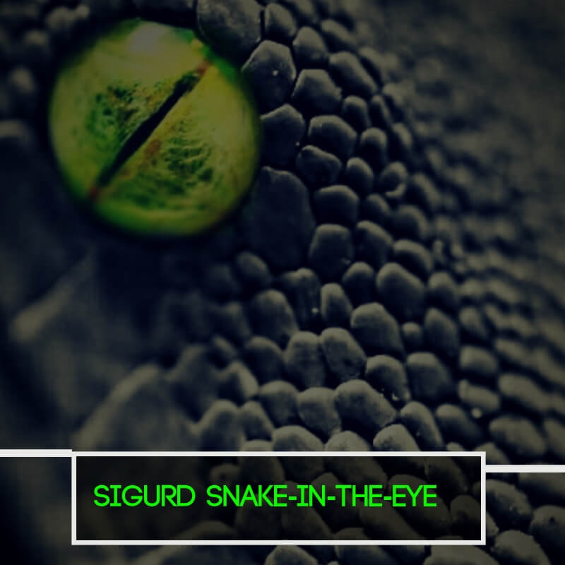 Sigurd Snake-in-the-Eye
