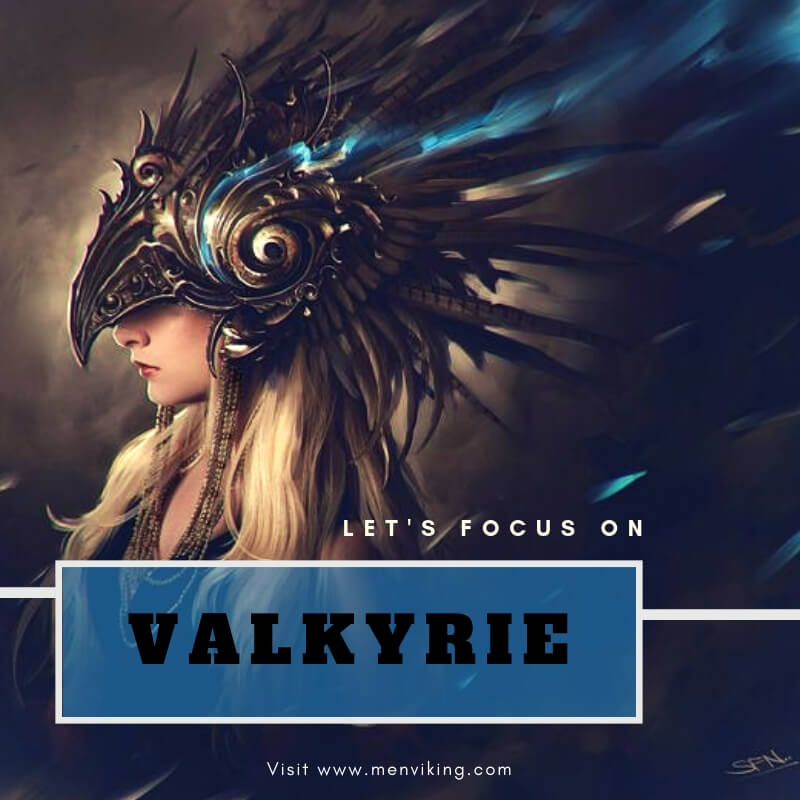 Who Are The Valkyrie Menviking