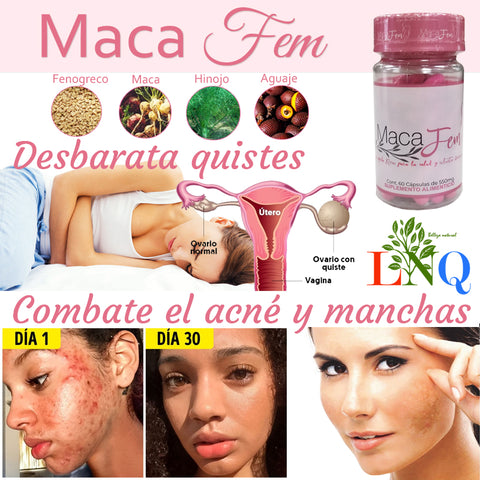 gluteal and breast supplement maca fem