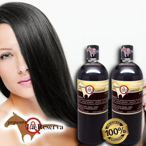 Yeguada the reserve shampoo of horse