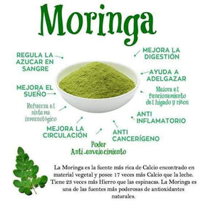 shelo nabel moringa concentrate
