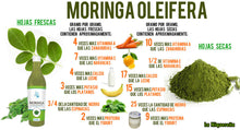 Upload image to gallery viewer, moringa concentrate to take