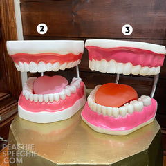 mouth models #2 and 3