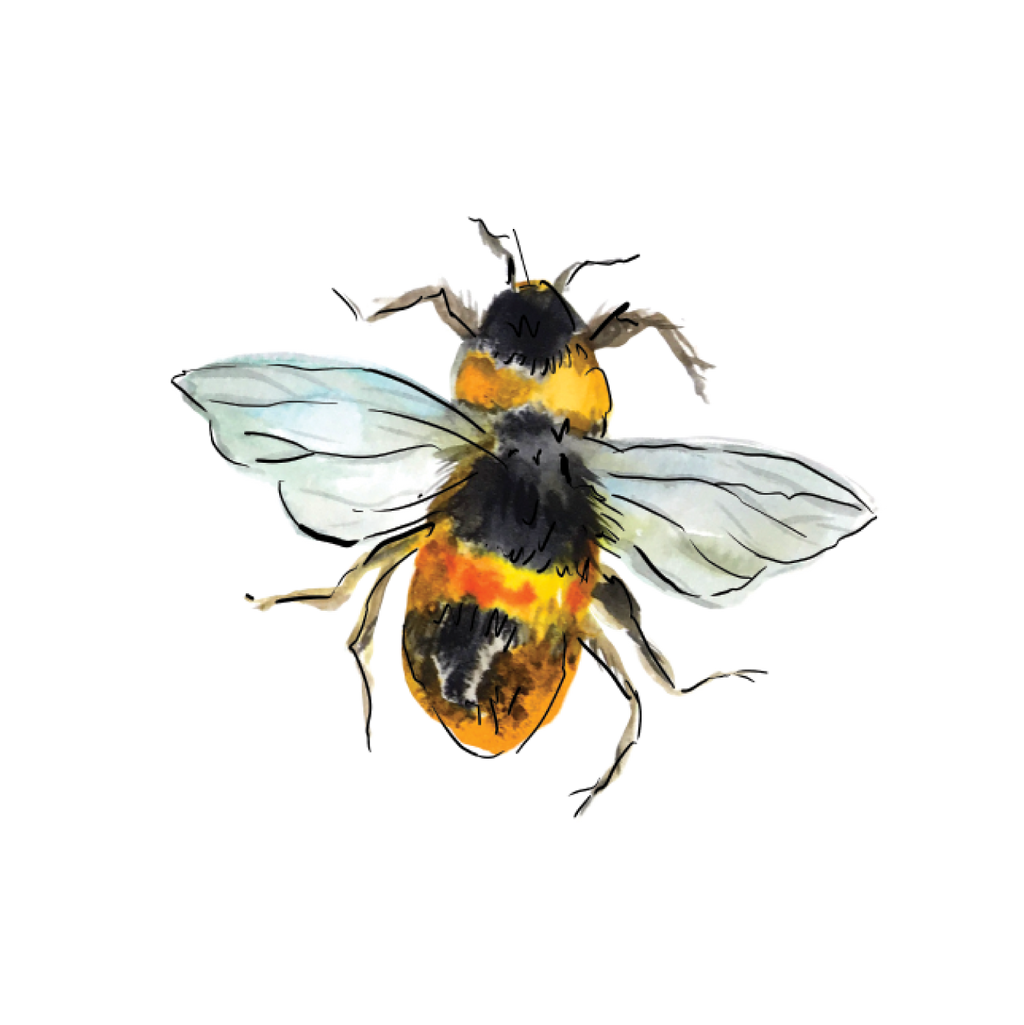 WHIMSY BUMBLEBEE DOWNLOADABLE ART