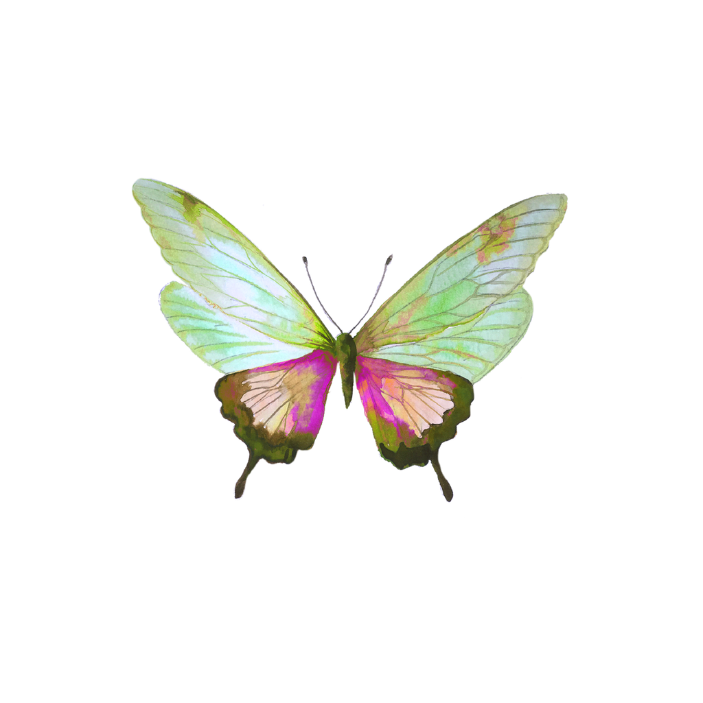 MADISON BUTTERFLY DOWNLOADABLE ART
