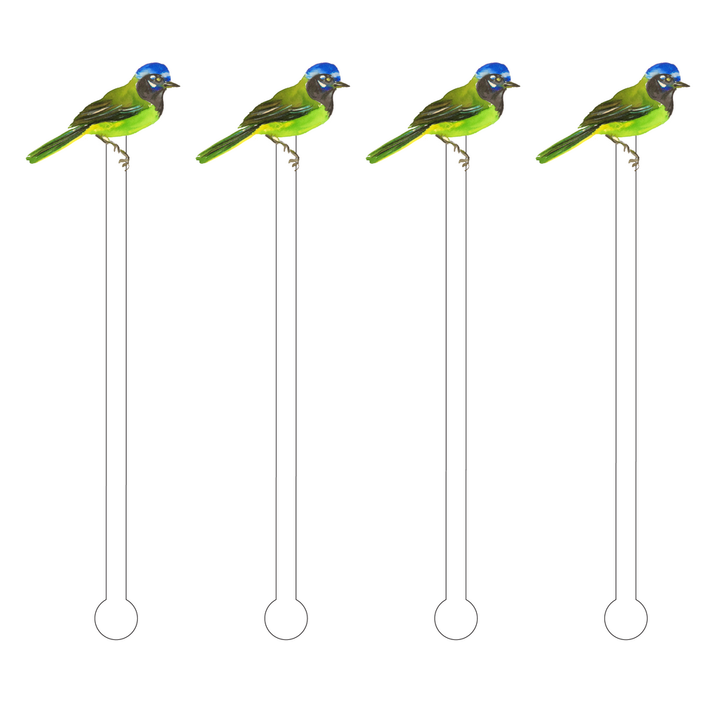 GREEN BIRD ACRYLIC STIR STICKS