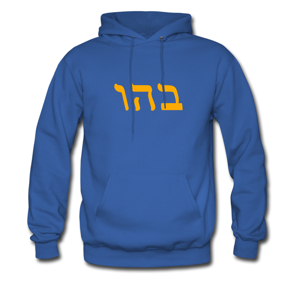 Genesis 1:2 Men's Hoodie - royal blue