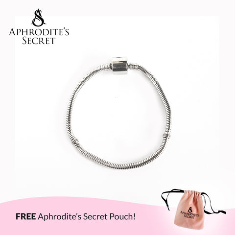 Aphrodite's Secret High Quality Charm Bracelet - Barrel Clasp (Pandora Inspired) Stainless Steel 19CM (Silver)