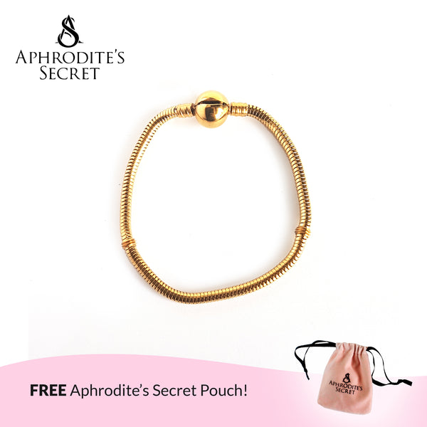 Aphrodite's Secret High Quality Charm Bracelet - Clasp Bangle (Pandora Inspired) Stainless Steel 18CM (Gold)