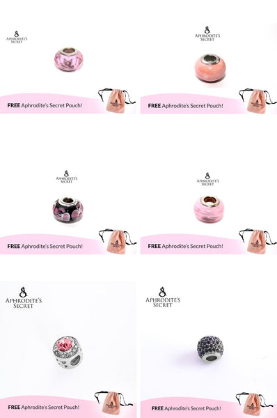 6 PCS - Aphrodite's Secret High Quality Charms & Beads (Pandora Inspired) Stainless Steel