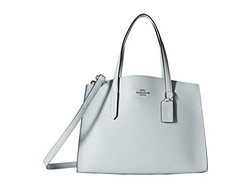 COACH Women's Polished Pebble Leather Charlie Carryall Sv/Sky One Size