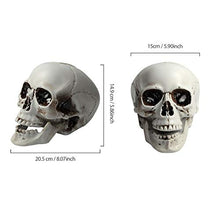 Load image into Gallery viewer, 1PCS Plastic Realistic Fake Simulation Human Skull Head Bone Model Halloween Prop Realistic Skeleton Spooky Halloween Decoration Party Supplies