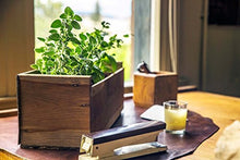 "Load image into Gallery viewer, Indoor/Outdoor Herb Garden Kit - Classic Wood Planter Box with Herb Seeds, Plant Stakes and Expanding Wondersoil - 16"" Long x 6"" Wide x 6"" Tall (Will fit in windowsill up to 6"" deep) -Antiqued Wood"