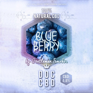 Blue Berry CBD