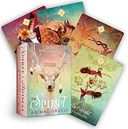 Spirit Animal Oracle | Oracle Cards | Ajna Jewels & Gems | Crystal Shop | Brisbane | Australia