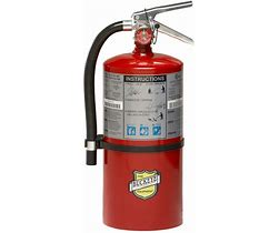 ABC 20lb Dry Chemical Fire Extinguisher - Wryker