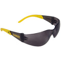 Protector Safety Glasses
