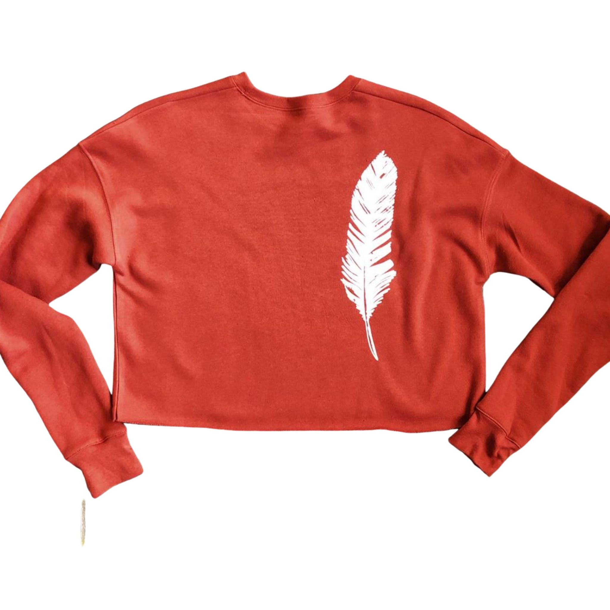 brick cropped sweatshirt with feather motif rear view