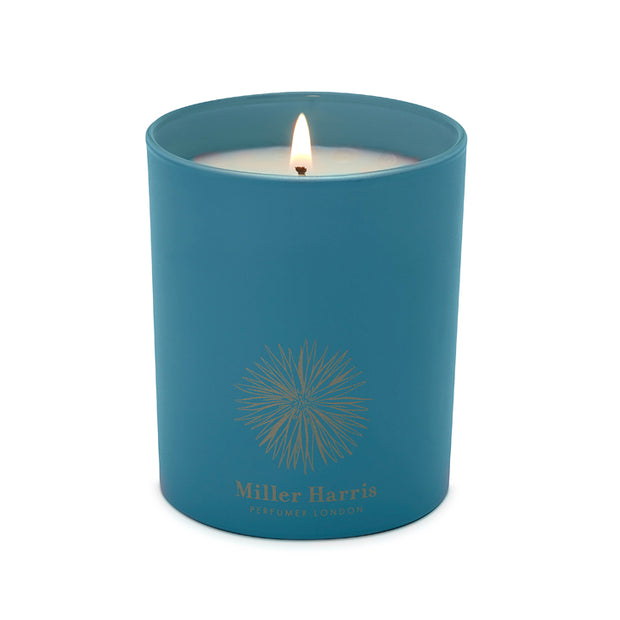 Wintertide Candle 185G