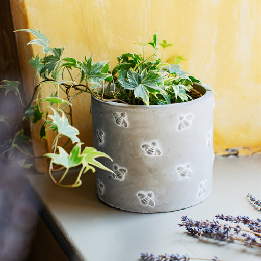 Embossed Queen Bee Planter