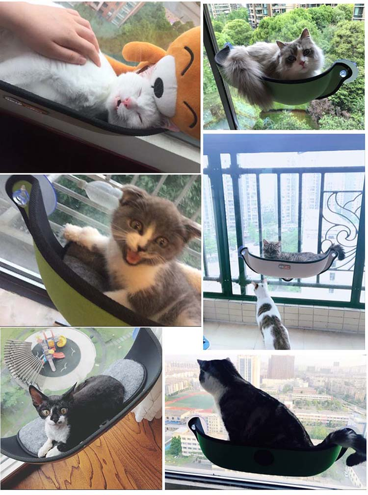 Cat Window Hammock
