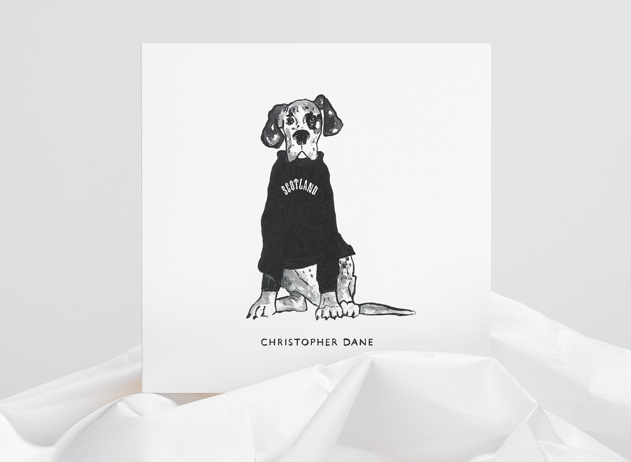 Jo Laing - Christopher Dane Dogs In Vogue Greeting Card - luxury stationery made in England