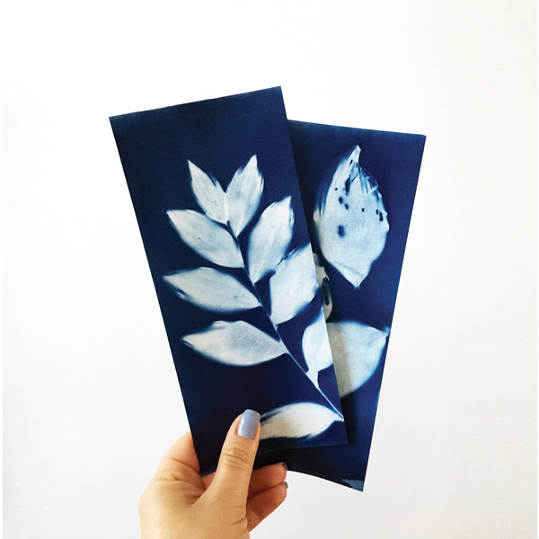 Botanical Prints + Cyanotype Workshop