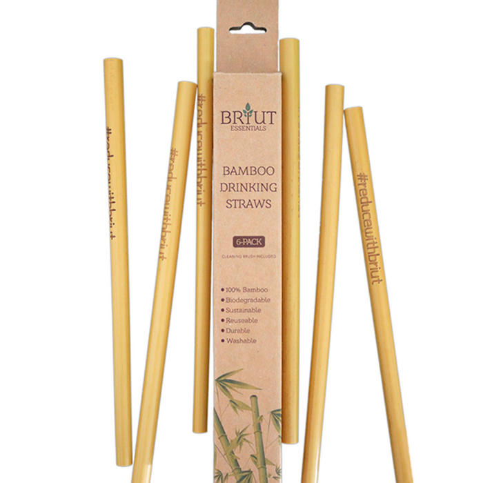 Biodegradable Bamboo Straws | 6-pack