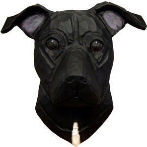 American Staffordshire Terrier (Natural) Small Head Study