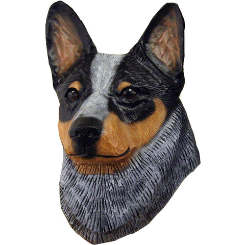 Australian Cattle Dog Small Head Study