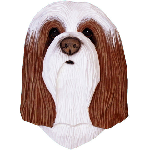 Bearded Collie Small Head Study