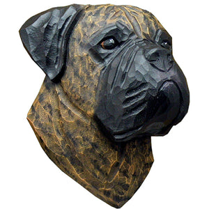 Bullmastiff Small Head Study