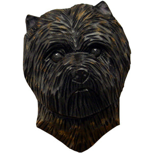 Cairn Terrier Small Head Study
