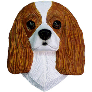 Cavalier King Charles Spaniel Small Head Study