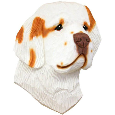 Clumber Spaniel Small Head Study